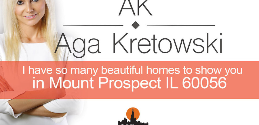 Homes for sale Mount Prospect IL